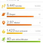 Fitness-Armband Fitbit-App Dashboard