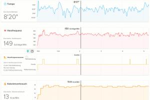 Fitbit Surge Laufen Fitness-Werte