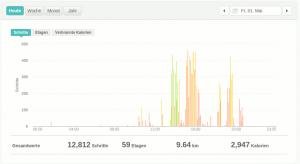 Fitbit Schritte im Webportal