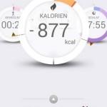 Pulsense View App Kalorien