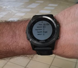 Fenix 3 - Schwimmen Details