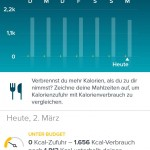 Fitbit App - Ernährung