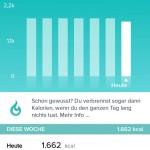 Fitbit App - Kalorien