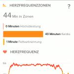 Fitbit App Laufen Auswertung HR