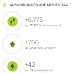 Fitbit Surge Wandern - Tagesauswirkungen