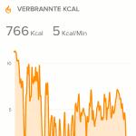 Fitbit Surge Wandern - Kalorien