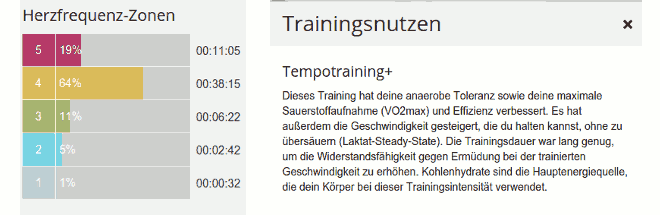 HR-Zonenübersicht und Trainingsnutzen