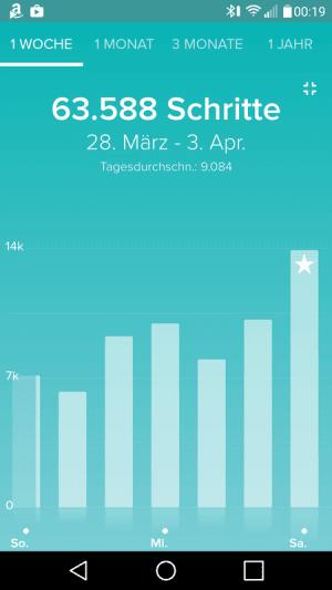 Fitbit App Schritte