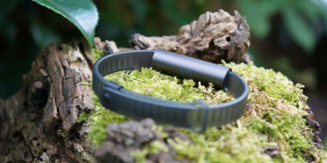 Misfit Ray Test – Modisches Fitness-Armband mit langer Akkulaufzeit