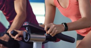 Fitbit Charge 2 (Quelle: Fitbit)