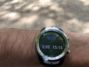 Mobvoi Ticwatch Pro Trainingsdaten